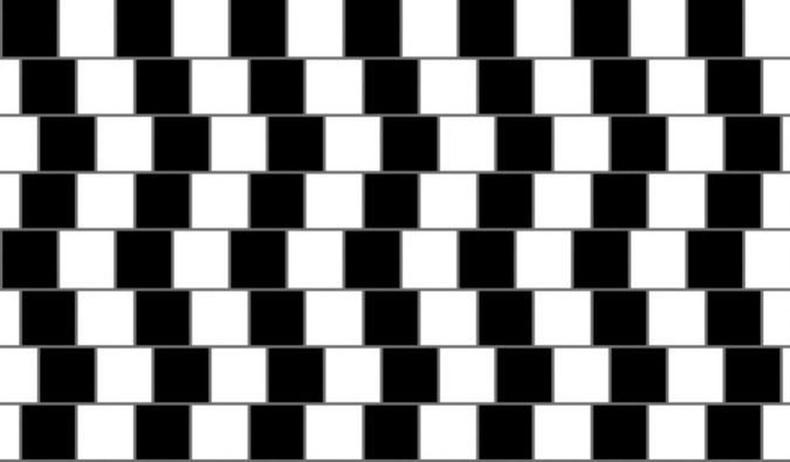 Эдгээр хэвтээ шугамууд шулуун байна уу? Муруй байна уу?