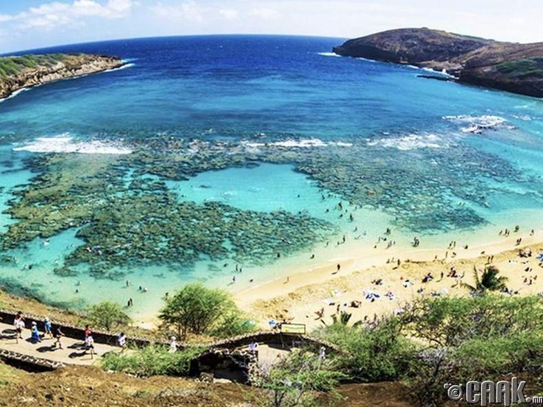 Ханаума тохой, Хонолулу, Хавай