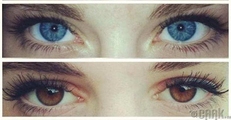 Цэнхэр нүд