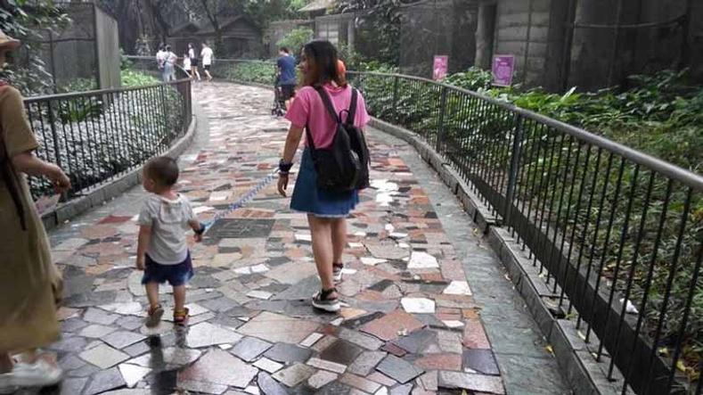 Эцэг эхчүүд хүүхдээ нохой шиг оосорлон хөтөлж явах нь бий