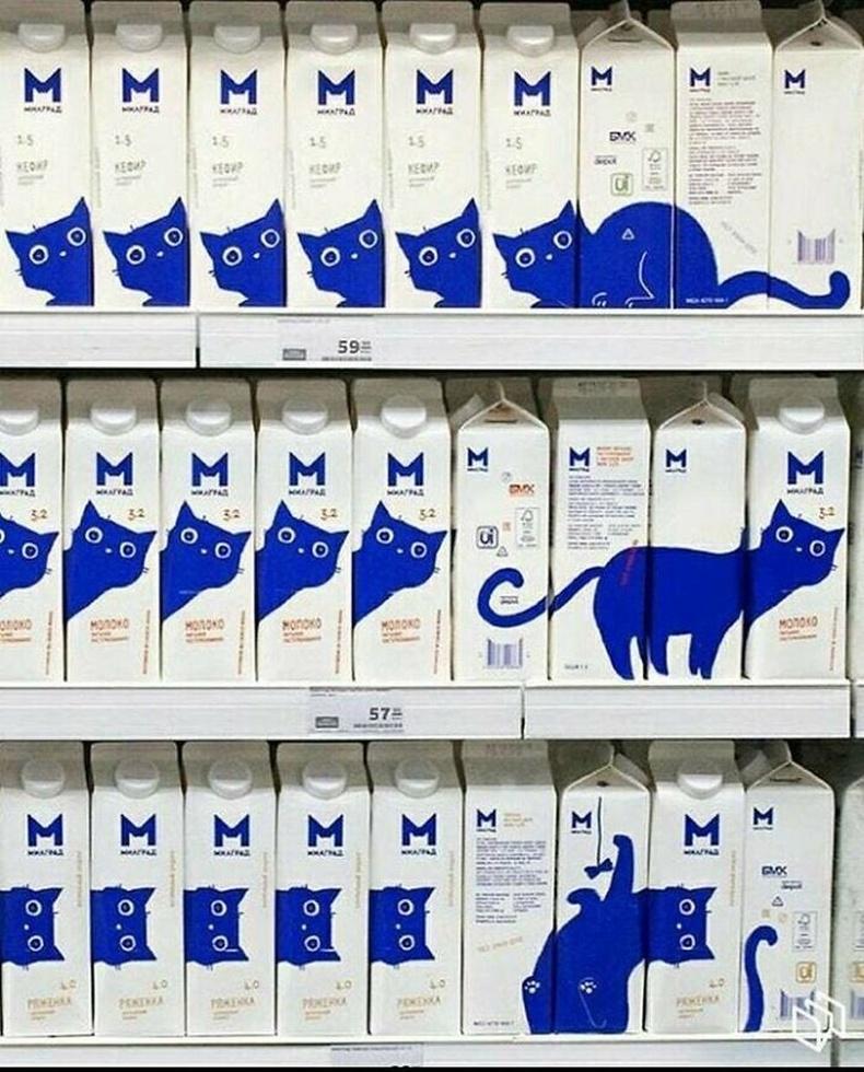 Зүгээр нэг сүүний хайрцаг дээрх муур биш, худалдааны зөвлөх хийдэг муур.
