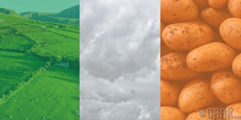 Ирландын далбаа