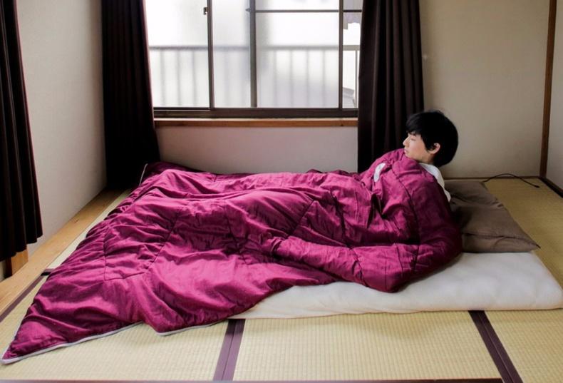 Япончуудын амьдралын хэв маяг