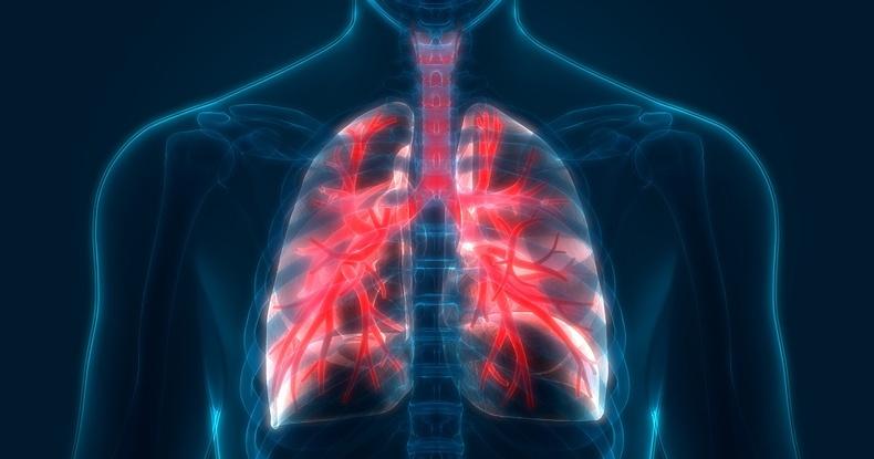 Таны уушги өвдсөнийг хэрхэн мэдэх вэ?