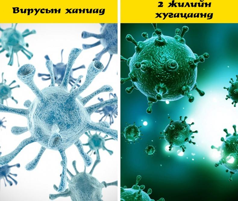 Микробууд биеийг эдгээхээс илүү хурдацтай үрждэг