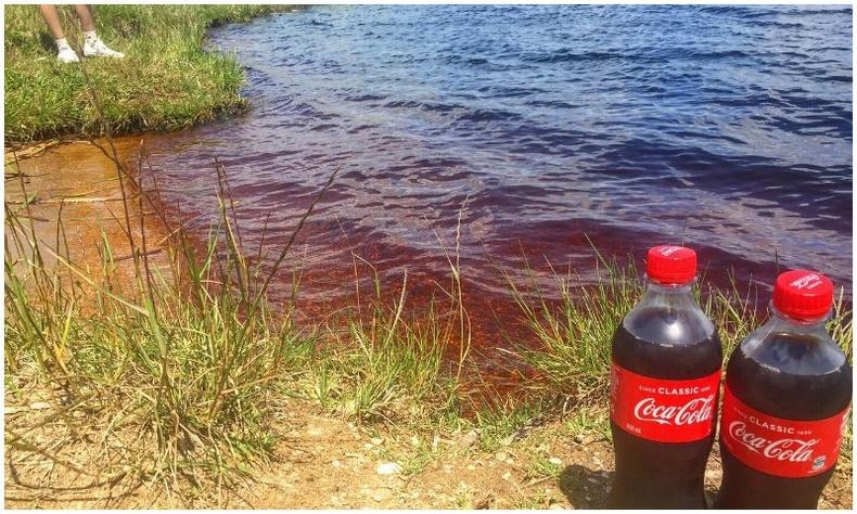 """Хийжүүлсэн ундаанд дурлагсдын анхаарлыг татаж буй Бразилын """"Кока Кола"""" нуур"""