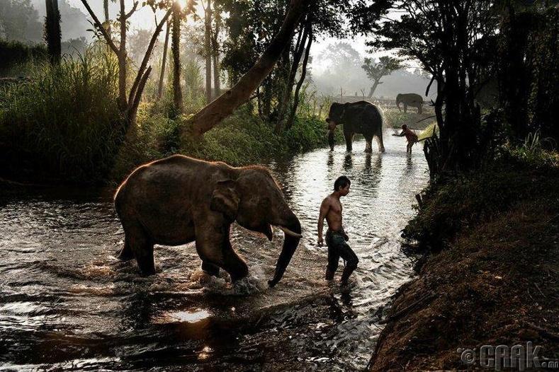 Тайланд улс