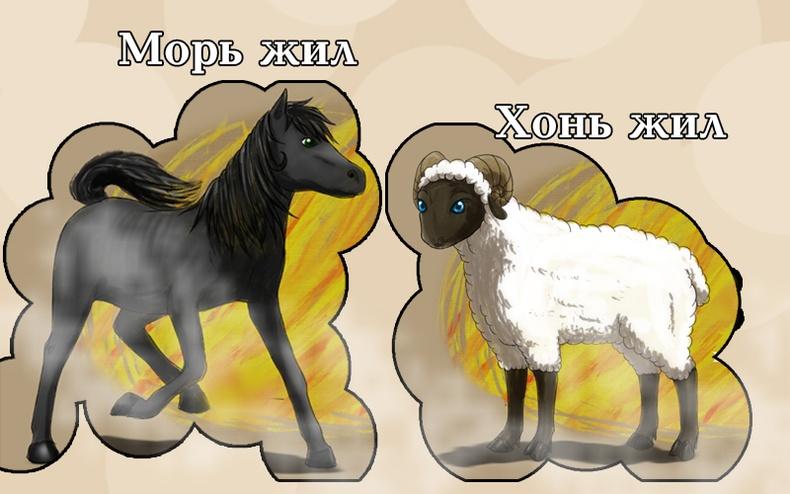 Морь, Хонь жилтний 2018 оны ерөнхий зурлага
