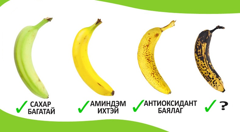 Гадил жимсийг ямар үед нь идвэл тохиромжтой вэ?