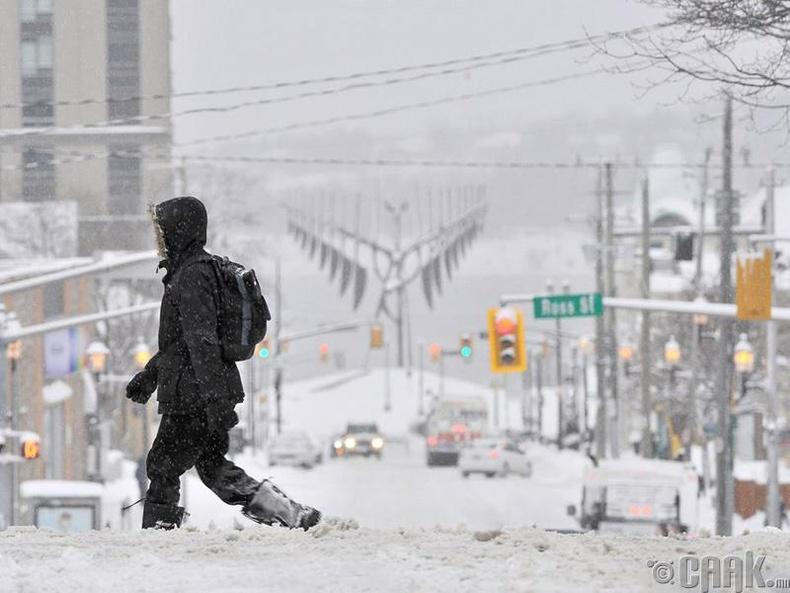 Канадын тэсгим хүйтэн өвөл