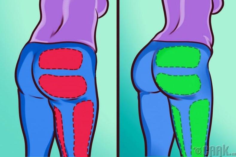 Ташаа хэсгийн булчинг чангалах
