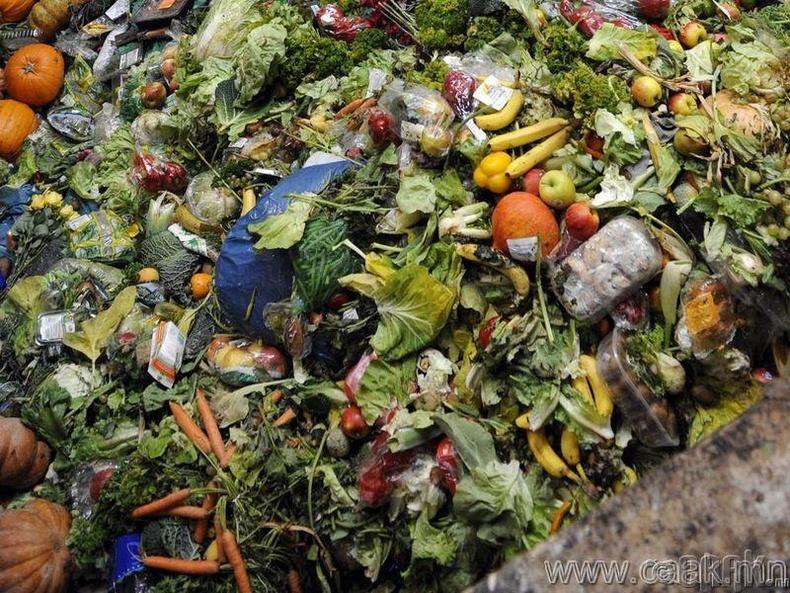 Хоол хүнсний хаягдал сар орчим болдог.
