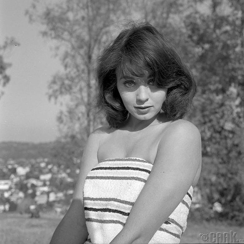 """""""Miss Universe-1956""""-ын ялагч: Амеркийн гоо бүсгүй Кэрол Моррис, 20 настай, 170 см өндөр."""