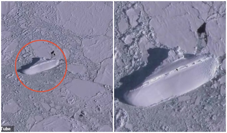 Антарктид тивийн мөсөн дундаас нууцлаг хөлөг онгоц илрүүлжээ
