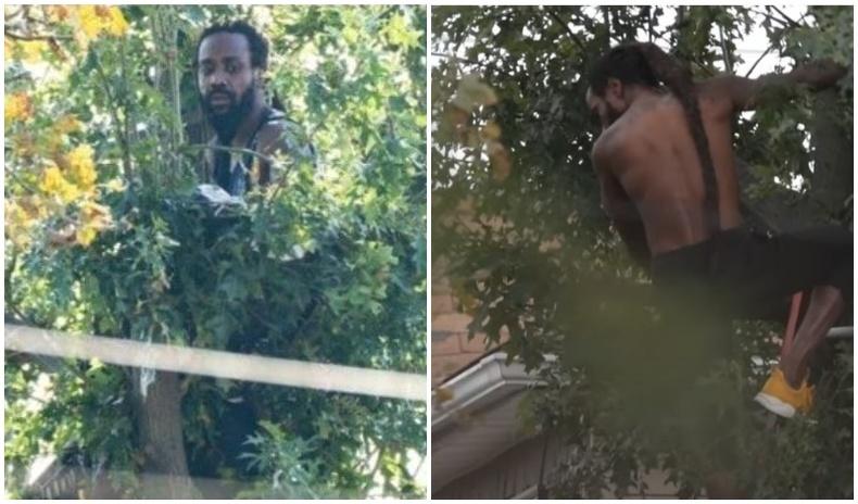 Цагдаагаас зугтаж, модон дээр 2 хоног суусан эрийг буулгажээ