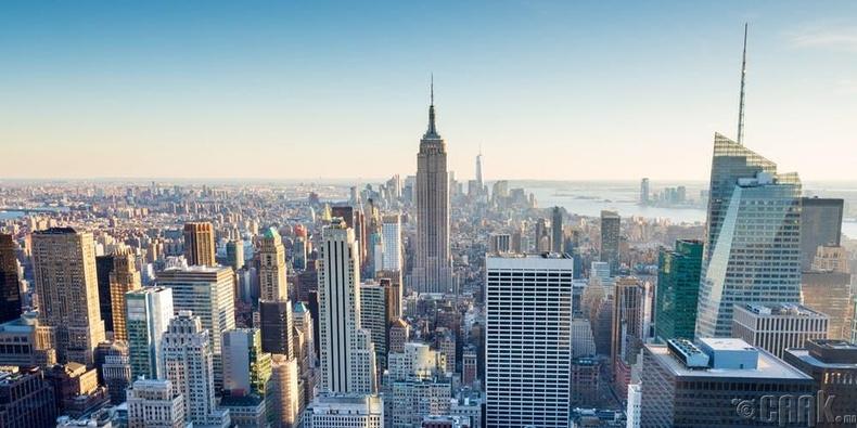 Нью Йорк хот ширэнгэн ой болно