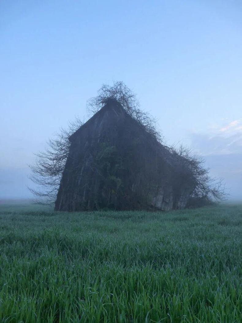 Он удаан жил хаягдсан байшин