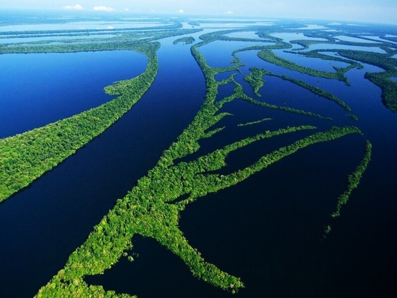 Амазон – хамгийн их устай гол