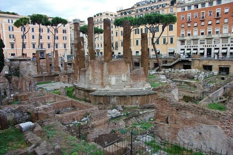 Юлий Цезарийн амиа алдсан газар өдгөө муурнуудын диваажин болон хувирчээ