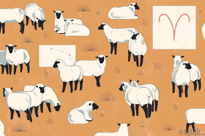 Хонь - Аль болох тайван байхыг хичээгээрэй