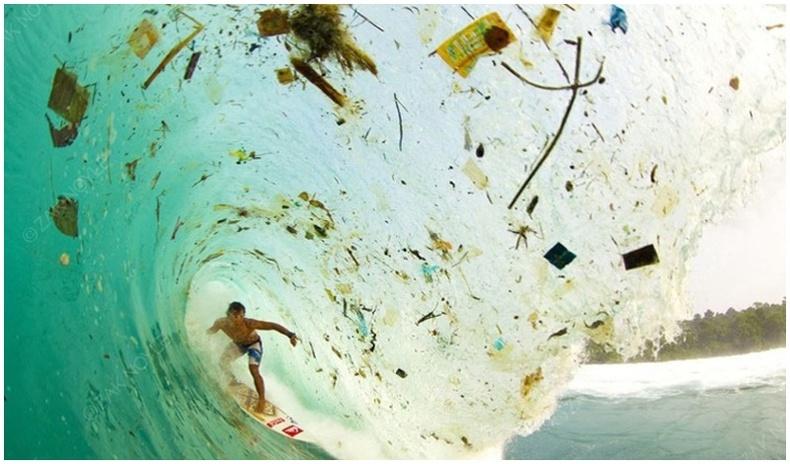 Дэлхийн хог хаягдлын талаарх сэтгэл түгшээсэн баримтууд