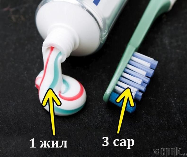 Шүдний оо болон шүдний сойз