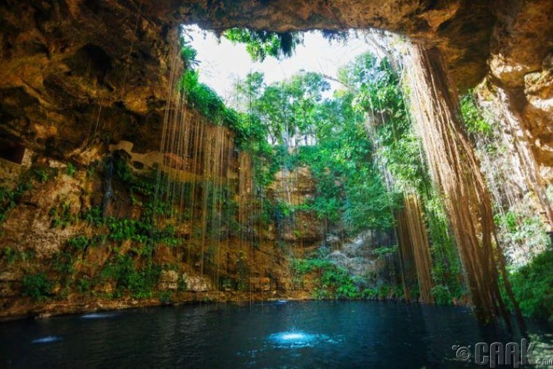 Юкатаны сенот (Yucatan Cenotes)