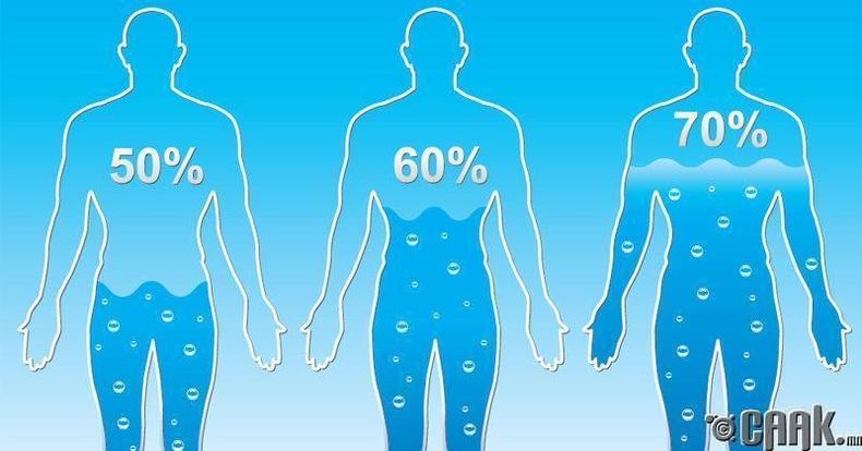 Хүний биеийн 70 хувь нь уснаас тогтдог  гэдэг үнэн үү?
