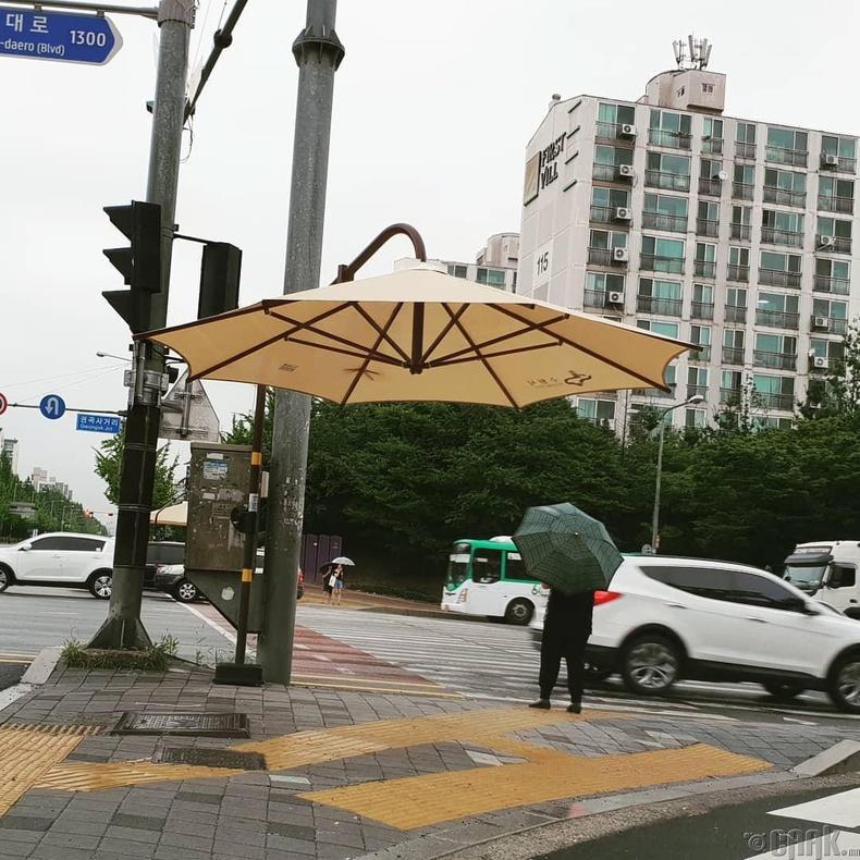 Ногоон гэрэл хүлээж буй явган зорчигчдод зориулсан борооноос хоргодох саравч