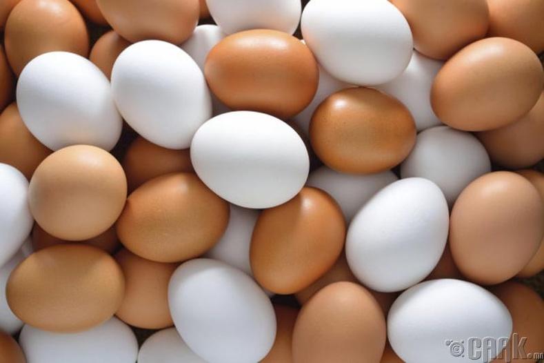 Өндөг хадгалах