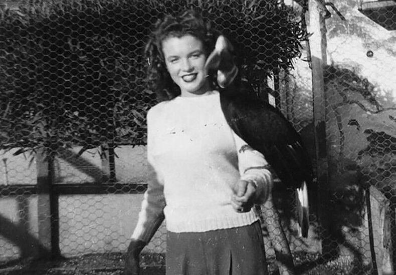 Мэрилин Монро амьтны хүрээлэнд, 1941 он.