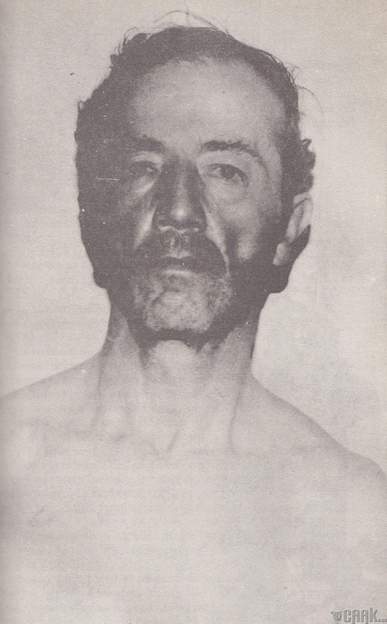 Даниэль Камарго Барбоса (Daniel Camargo Barbosa)