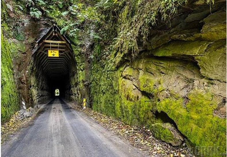 Мартагдсан зам, Шинэ Зеланд