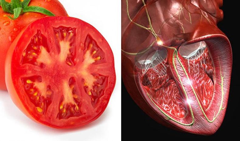 Улаан лооль - Зүрх