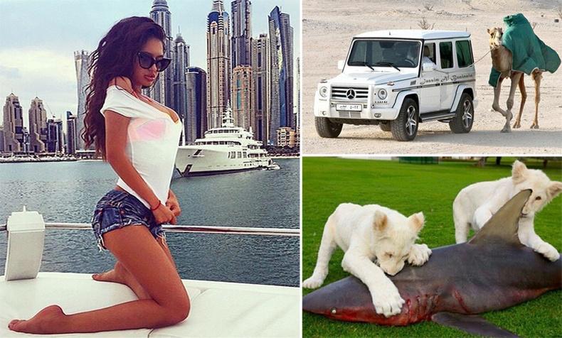 Дубайн залуусын тансаг амьдрал