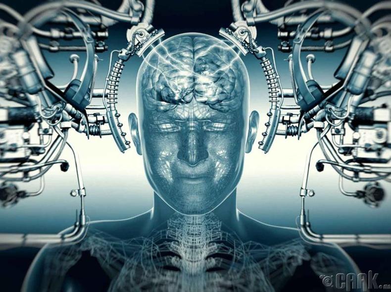 Бид бодохдоо: Тархи яг л компьютер шиг