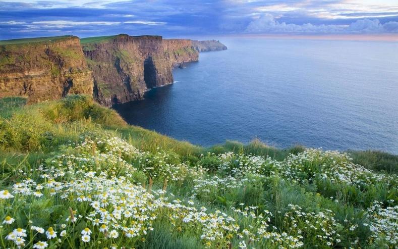 Ирланд