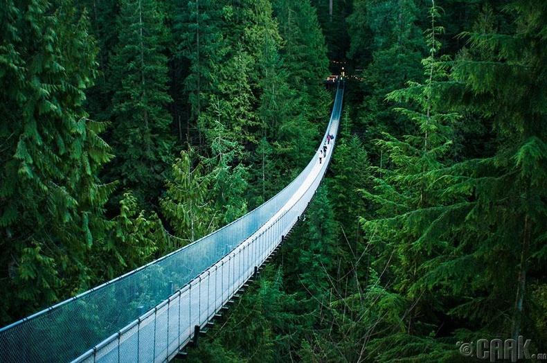 Канадын Ванкувер хотод байх Капилон гүүр