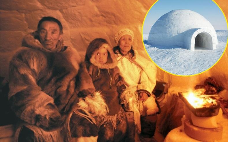 """Туйлын бүсэд амьдардаг Эскимочууд """"мөсөн гэр"""" дотроо яагаад даардаггүй вэ?"""