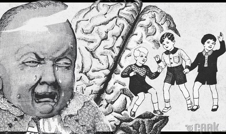 Бид бодохдоо: Хүний тархи төрсний дараа гурван жилийн дотор бүрэн төлөвшдөг