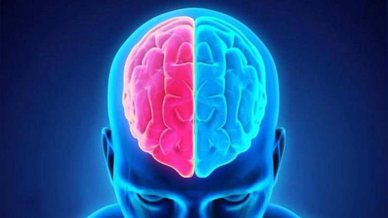 Тархины цусан хангамжыг хэрхэн сайжруулах вэ?