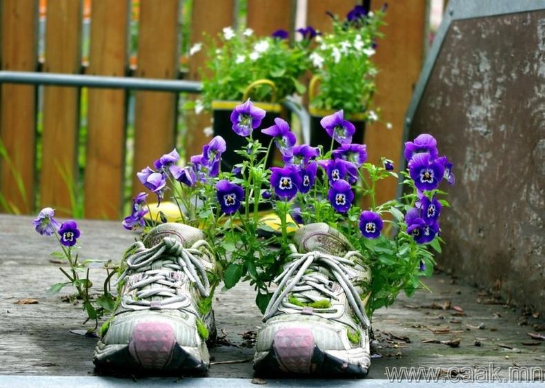 Гутал ба цэцэгс