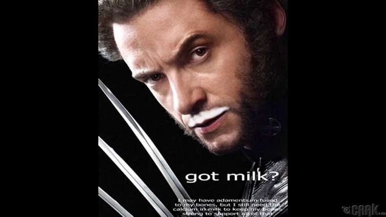 "California Milk Processor Board: ""Got Milk?"""