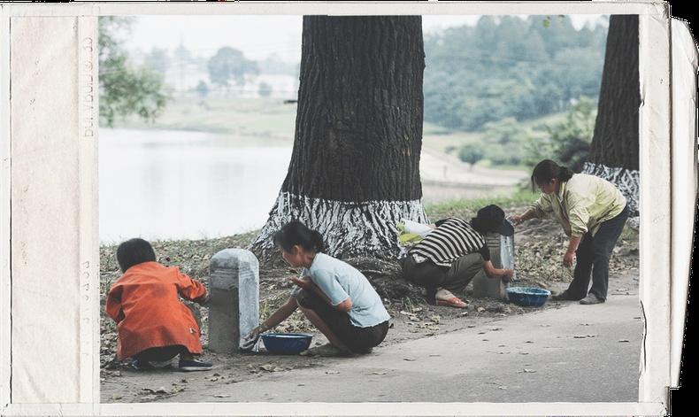 Хүүхдийн хөдөлмөрийг хориглодог