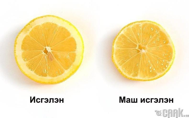 Лимоны хальсаар амтыг нь мэдэх: