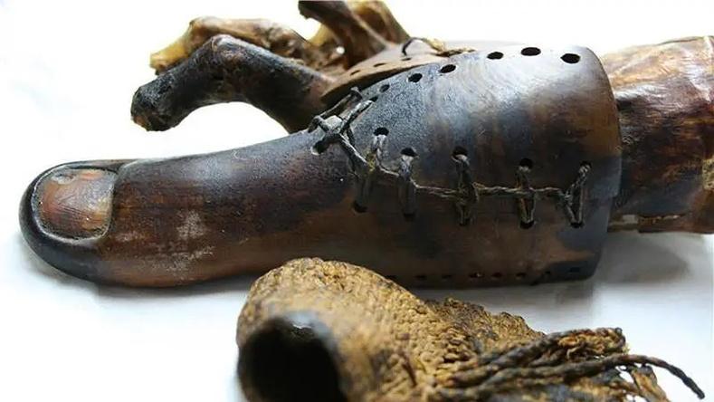 Хамгийн эртний протез буюу хиймэл хөл (3000 настай)