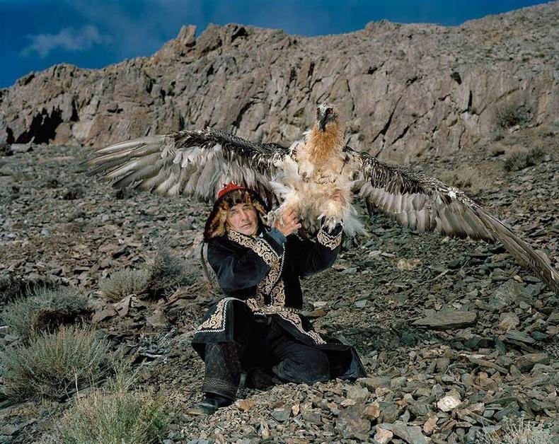 Тахан ба түүний агнасан ёл. Монгол, 2013