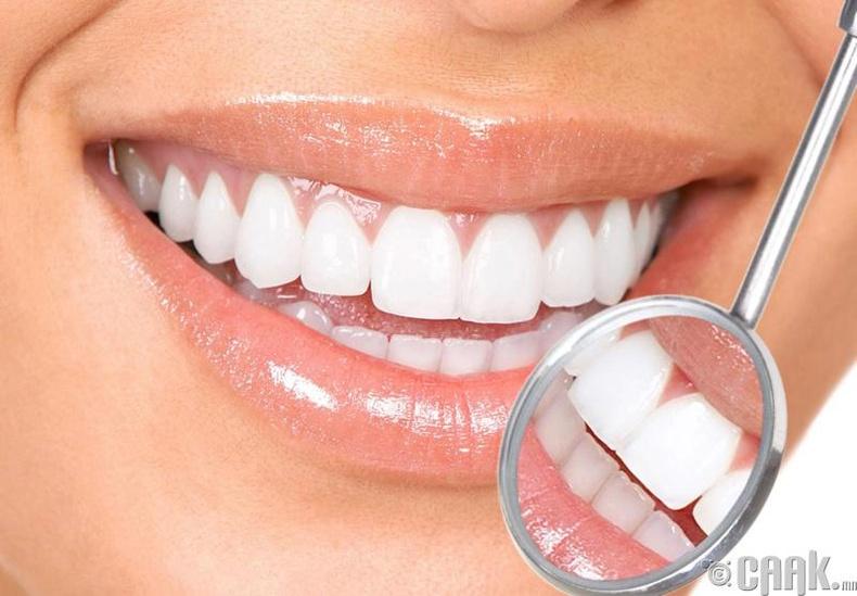 Эрүүл шүд болон буйл