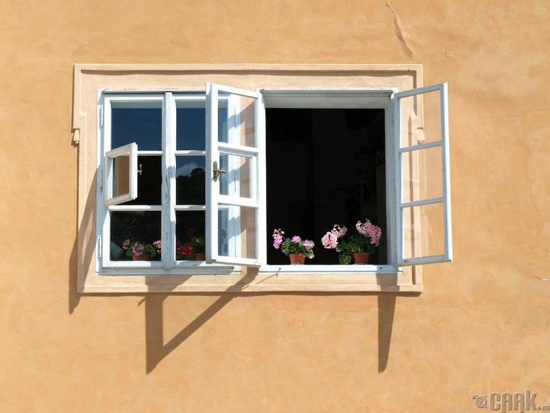 Унтлагын өрөөний цонхоо онгойлгох