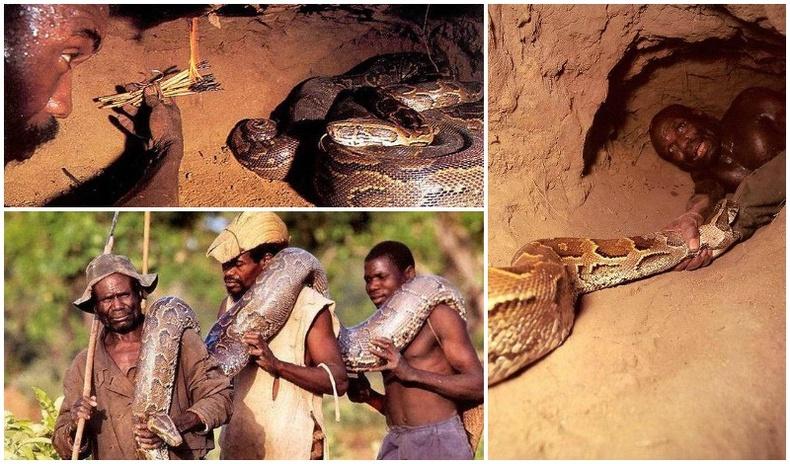 Африк эрчүүдийн амь өрссөн ан
